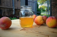Peach Booch feat img. hillbilly nutrition