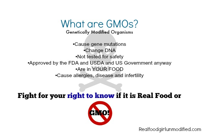 GMOs for dingbats and dolts by Real Food Girl