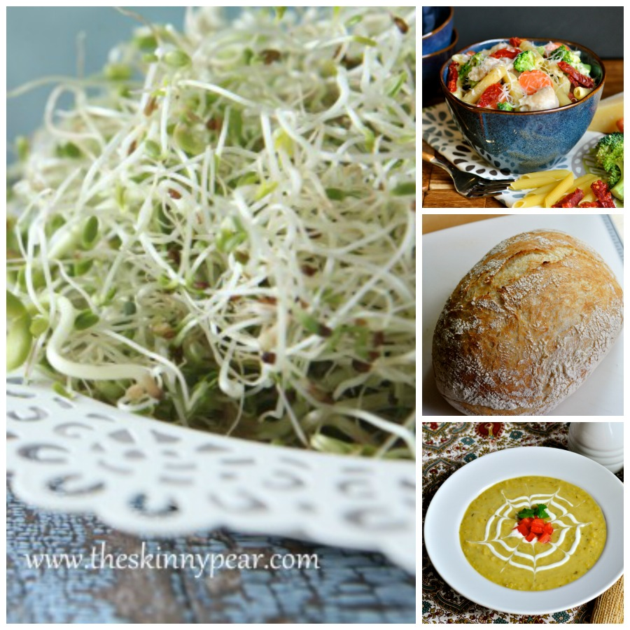 My Favorite Things March 2014 by Real Food Girl: Unmodified