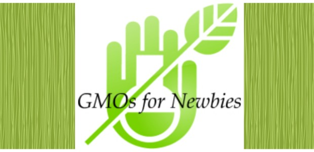 Real Food Girl does GMOs for Newbies